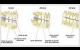 Pathologie agénésie dentaire